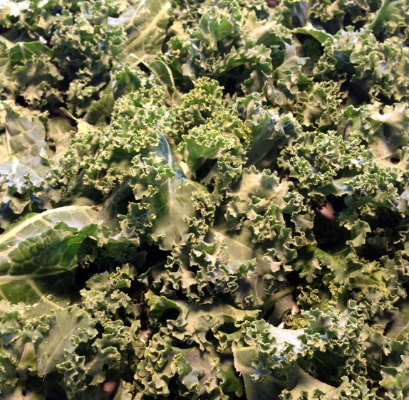 fresh kale | Dianna Bonny Photography