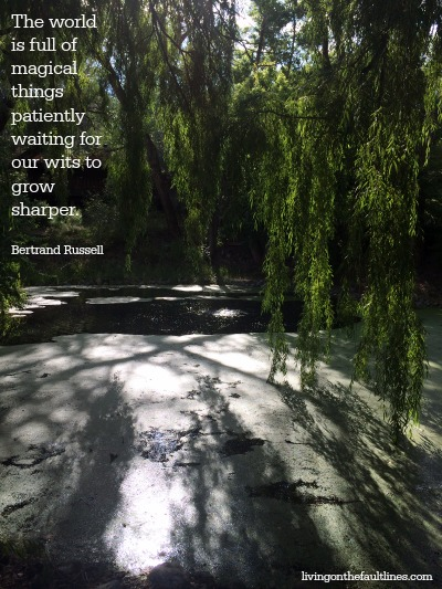 Bertrand Russell quote photo | Dianna Bonny