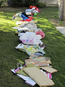 So Many Bags   Dianna Bonny