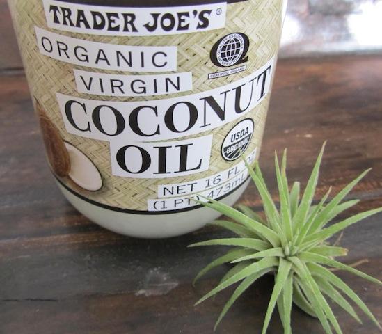 organic coconut oil   Dianna Bonny Photography