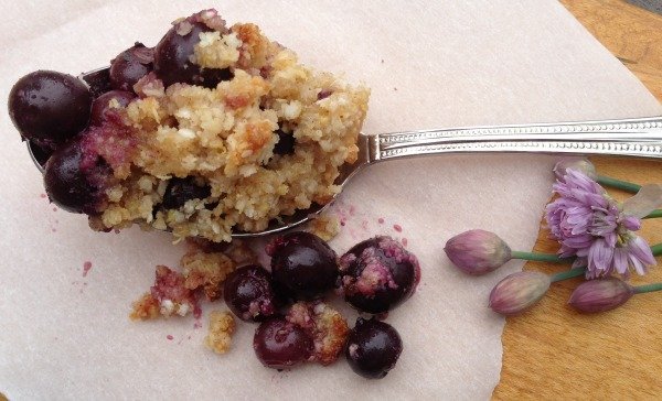 blueberry crisp recipe | Dianna Bonny Photography