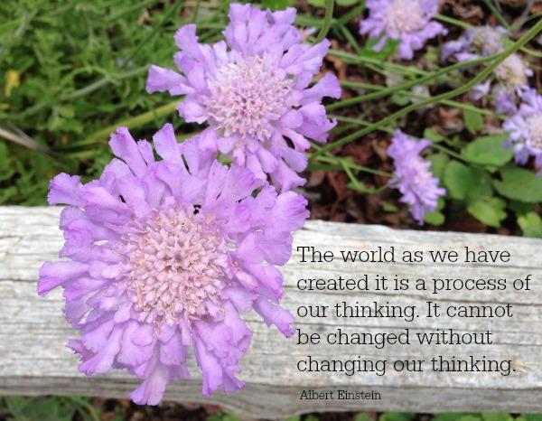 Einstein quote | Dianna Bonny Photography