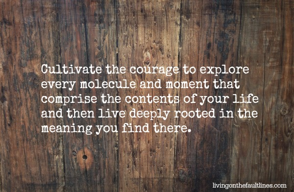 cultivate courage | Dianna Bonny Photography