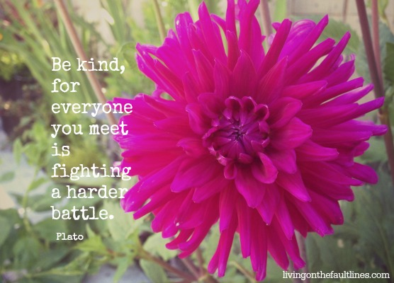 Be Kind Plato Quote   Dianna Bonny Photography