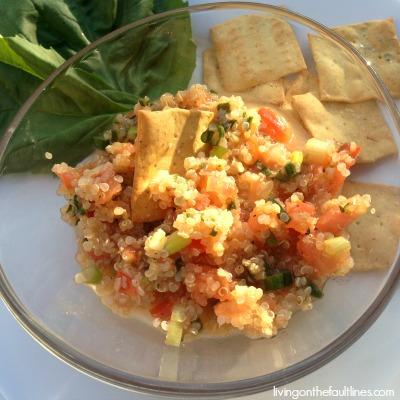 quinoa bruschetta photo | Dianna Bonny Photography
