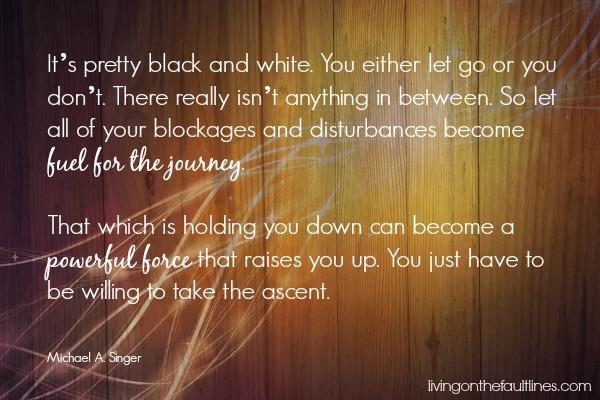 michael singer quote | Dianna Bonny Photography